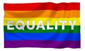 image of gay flag  - Gay rainbow equality flag - JPG
