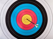 image of archery  - Arrows in archery target - JPG