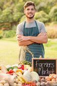 picture of farmer  - Handsome farmer standing arms crossed on a sunny day - JPG