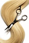 picture of hair cutting  - long blond human hair - JPG
