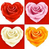 stock photo of love heart  - Roses in the shape of heart - JPG