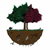 Tree With Foliage Icon. Vector Illustration Of A Tree With Green And Autumn Foliage. Hand Drawn Deci poster