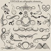 stock photo of scroll design  - Vector set - JPG