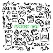 Probiotics Bacteria, Food And Medicine Set.  Gut Bacterial Flora. Fermentation Products. Vector Icon poster