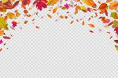 Autumn Falling Leaves. Autumnal Forest Foliage Fall. Vector Illustration Isolated On White Backgroun poster