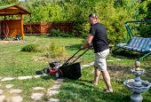 Gardener With Electric Lawn Mower Is Trimming The Garden. Sunny Day, Dacha. Adult Man Pruning And La poster