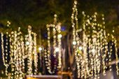 Blur - Bokeh - Decorative Outdoor String Lights Hanging On Tree In The Garden At Night Time - Decora poster