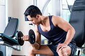 Man doing dumbbell biceps curls at gym poster