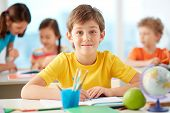 image of diligent  - Portrait of happy schoolboy at workplace looking at camera with his classmates on background - JPG