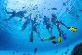 stock photo of feeding  - Group of friends snorkeling and feeding fish in a sea - JPG
