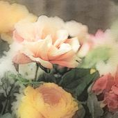 art floral vintage background in pastel colors with peach roses