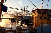 Harbor With Fishing Ships, Zoutkapm, Netherlands
