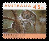 AUSTRALIA - CIRCA 1994: A stamp printed in Australia shows a Koala asleep in tree with inscriptions