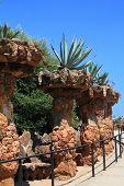 pic of gaudi barcelona  - Cactus close - JPG