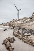 picture of stockade  - Half-demolished old military fortifications in Liepaja Latvia ** Note: Shallow depth of field - JPG