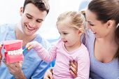image of false teeth  - Dentist teaching girl how to brush teeth - JPG