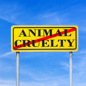 stock photo of animal cruelty  - Animal cruelty written on yellow street sign and crossed off - JPG