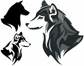 picture of wolf-dog  - husky dog design  - JPG
