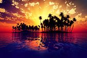 image of pacific islands  - red sun rays inside coconut island on golden tropic sea - JPG