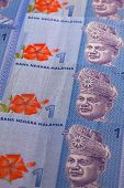 picture of ringgit  - Ornament from the same Malaysia Ringgit banknotes - JPG