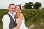 stock photo of naturel  - wedding in the vineyards for an happy wedding couple - JPG