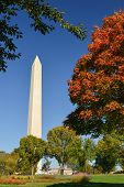 stock photo of washington monument  - Washington DC in Autumn  - JPG