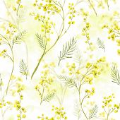 pic of mimosa  - Seamless Spring Pattern with Watercolor Sprig of Mimosa - JPG