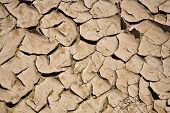 pic of loam  - dried and cracked mud in the near of a dried up creek in Desert Valley Nevada - JPG