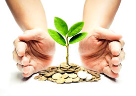 stock photo of sustainable development  - Palms with a tree growing from pile of coins  - JPG