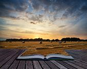 image of hay bale  - Beautiful Summer sunset over field of hay bales in countryside landscape conceptual book image - JPG