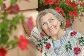 stock photo of beautiful senior woman  - Portrait of a beautiful senior woman in green park - JPG
