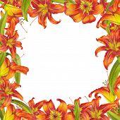 Постер, плакат: Frame of lilies