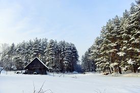 foto of cabana  - cabana on bank of frozen lake followed by winter forest - JPG