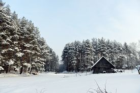 picture of cabana  - cabana on bank of frozen lake followed by winter forest - JPG