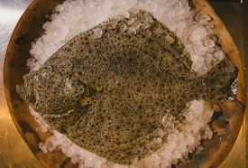 foto of flounder  - Flounder raw fish on cutting board in kitchen - JPG
