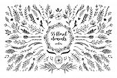 Hand Sketched Vector Vintage Elements ( Laurels, Frames, Leaves, Flowers, Swirls And Feathers). Wild poster
