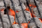 picture of heatwave  - Hot barbeque briquets beneath a grill - JPG