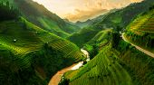 Terraced Rice Field In Mu Cang Chai, Vietnam poster