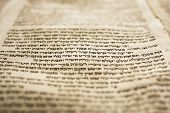 image of torah  - A part of the Hebrew text from a portion of a Torah scroll - JPG
