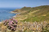 The South West Coast Path Near Woolacombe, Devon, England, Uk, Heading Towards Morte Point, On One O poster