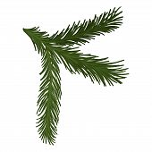 Green Fluffy Pine Branch With Short Needles. Christmas Symbol. Nature And Botany Theme. Flat Vector  poster