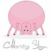 Morning Yoga With A Pig. The Pig Stands In The Pose Of The Bridge. Pig Isolated On White Background  poster