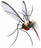 foto of malaria parasite  - Fun mosquito - JPG