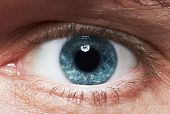 stock photo of observed  - Close - JPG