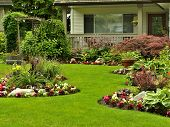 stock photo of manicured lawn  - A beautifully arranged flower garden and residential yard on a bright day - JPG