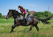 stock photo of horse face  - beautiful young woman on a horse - JPG