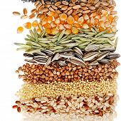 stock photo of flax seed oil  - Cereal Grains and Seeds  - JPG