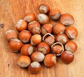 Постер, плакат: Many Hazelnuts