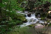 stock photo of brook trout  - A peaceful trout stream in the mountains of Virginia - JPG