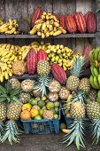 stock photo of guayaquil  - Cocoa fruit surrounded by other tropical fruits on the counter of the Latin America street market Ecuador - JPG